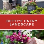 Betty's Landscape Entry