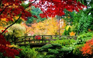 asian-garden-fall-computer-backgrounds1