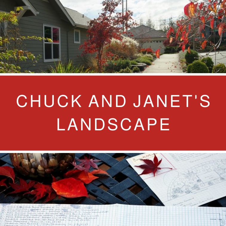 Chuck and Janet's Landscape